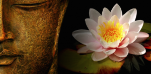 Intro to Meditation Class @ Bozeman Dharma Center | Bozeman | Montana | United States