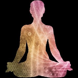 Meditation Body Basics @ Bozeman Dharma Center | Bozeman | Montana | United States